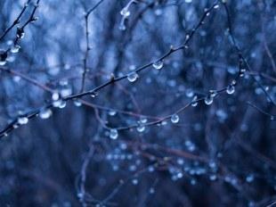 rain-drops-926583__340